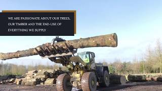 Image for: Shelmore Timber Promo Video