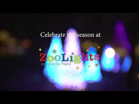 Download ZooLights 2019 Mp4 HD Video and MP3
