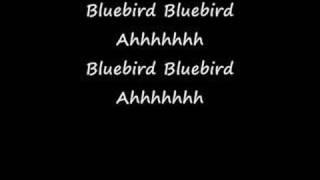 Bluebird  With Lyrics  Paul McCartney & Wings