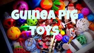 Guinea Pig Toy Collection *2014*