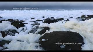 冬の波の花