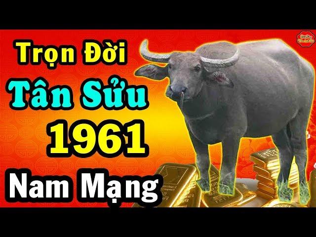 Tử Vi Trọn Đời TÂN SỬU Nam Mạng, Sinh Năm 1961