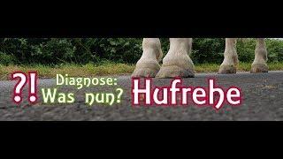 Diagnose Hufrehe! Vorbei Mit Reiten? #Nugget