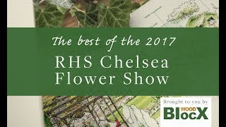 Behind the Scenes at RHS Chelsea Flower Show - Wood BlocX