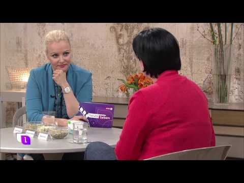 Mutterkraut Arzneipflanze des Jahres 2017 - ORF Heute Leben