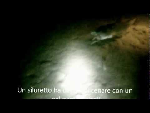 Immersione notturna nel lago di Monate