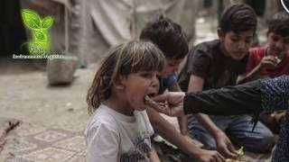 Gaza Strip…Status Quo