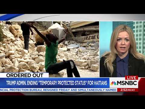 Fiona McEntee   MSNBC TV News 11 25 2017 MSNBC Live