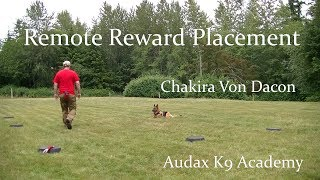 Remote Reward Placement - Full Video