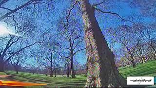 "Tree spots are fun!!!!// Sensi3 Micro 3""// FPV Freestyle!!!!!"