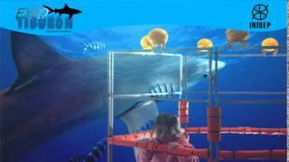 DIA 2 Expo Tiburon29