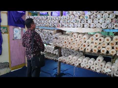JAMUR TIRAM Part 4 Uji Coba Model BP-PAUD dan Dikmas Sulawesi Selatan