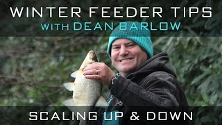 Winter Feeder Tips With Dean Barlow - Scaling Up & Down