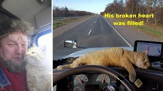 Lonely truck driver adopts abandonded stray cat