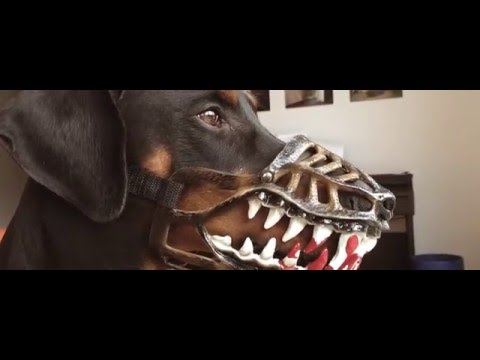 Weredog - Der Werwolf Maulkorb