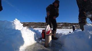Рыбалка зимой в якутии на блесну