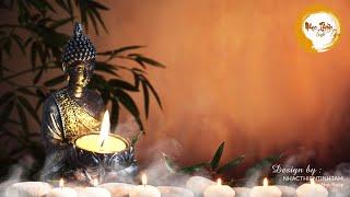 Nhạc Thiền Tĩnh Tâm -Nhạc thiền dễ ngủ, giảm stress căng thẳng giúp bình an trong cuộc sống