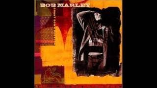 Concrete Jungle - Bob Marley ft. Rakim.wmv