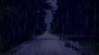 Light RAIN Sounds on Forest Road & DARK SCREEN, Sound of Rain to Sleep, Relax, Study, Beat Insomnia