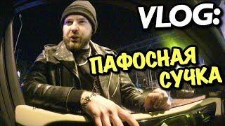 VLOG: МОЯ ПАФОСНАЯ СУЧКА / Андрей Мартыненко