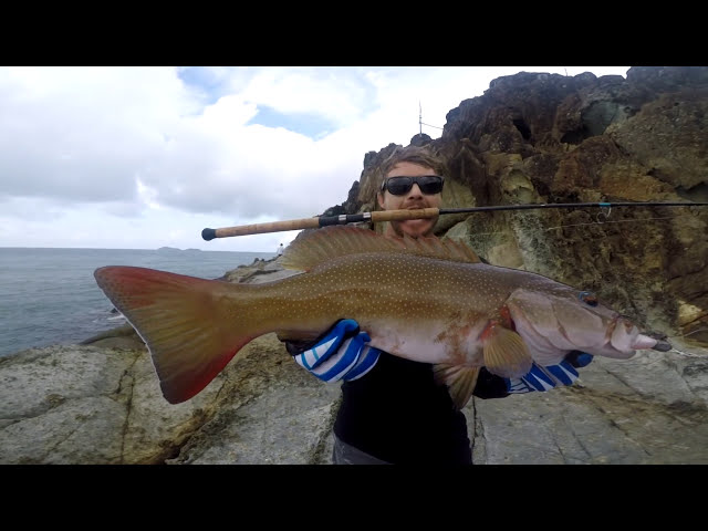 Fishing Tropical Islands in Search of Monster GT | Part 1 AMAZING Coral Trout LOST Giant Trevally