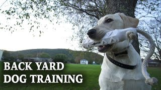 Training a Hunting Dog | Backyard Dog Training
