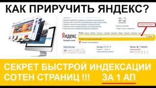 Как приручить Яндекс  Быстрое индексирование сотен страниц сайта за первый обход роботом