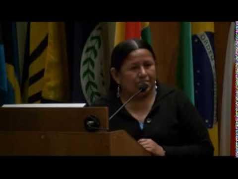 La quinua, los pueblos indígenas y la seguridad alimentaria mundial