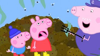Peppa Pig Official Channel | Peppa Pig and Grandpa Pig's Stinky Manure