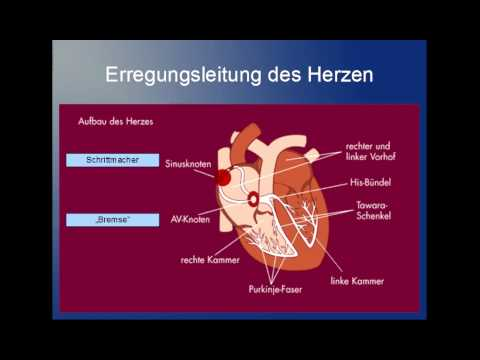 Als hypertensive Angiopathie zu behandeln