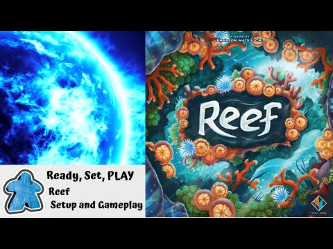 Ready, Set, PLAY - Reef Setup and Gameplay