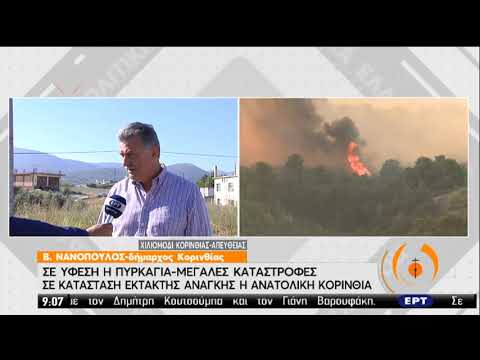 Δήμαρχος Κορινθίας | Σε ύφεση η πυρκαγιά – Μεγάλες καταστροφές | 24/07/2020 | ΕΡΤ