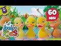 Download Video Five Little Ducks - The Greatest Songs for Children | LooLoo Kids