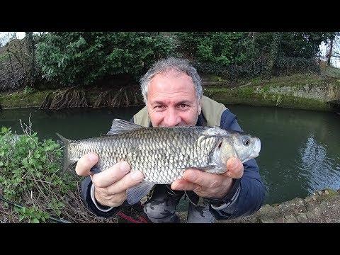 La pesca per principianti un forum