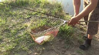 Отчет о рыбалке на суре