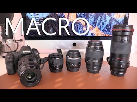 Fotografía Macro | Comparativa