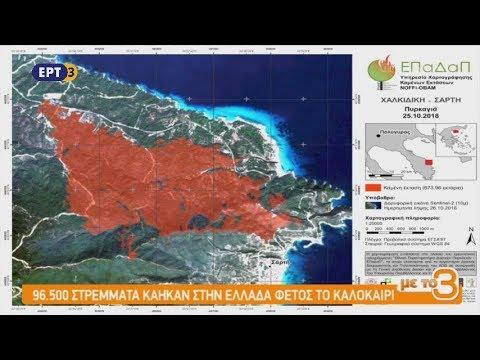Χαρτογράφηση των καμένων δασικών εκτάσεων στην Ελλάδα | ΕΡΤ