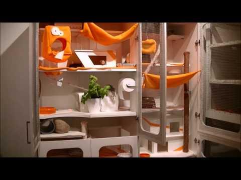 Ikea Dombas - Schrankumbau zum Rattengehege      Einrichtung von Nagerpalast