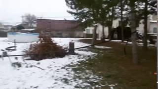 Takhle kácíme stromy