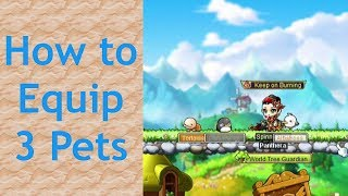 How to Equip 3 Pets