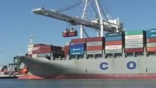 Global Shipping Loop