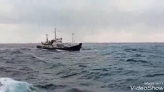 Рыболовный сейнер рс типа рс-300