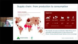 Red de SDSN sobre sistemas agrícolas y alimentarios sostenibles: un ingreso vital para los productores de cacao