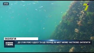 До 2100 року Одесу та ще понад 30 міст може частково затопити