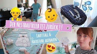 LAUFGITTER & TRIPPTRAPP AUFBAUEN / Nestbautrieb schlägt nochmal zu!