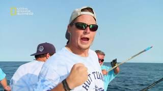 سمكة التونة العنيدة - إثبات الجدارة