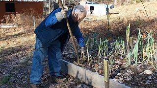 Winter Vegetable Gardening in Massachusetts