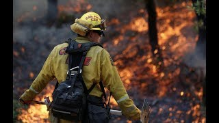 """""""Cataclysmic Wildfires kills 42 In California As 100,000 Flee From The Flames"""""""
