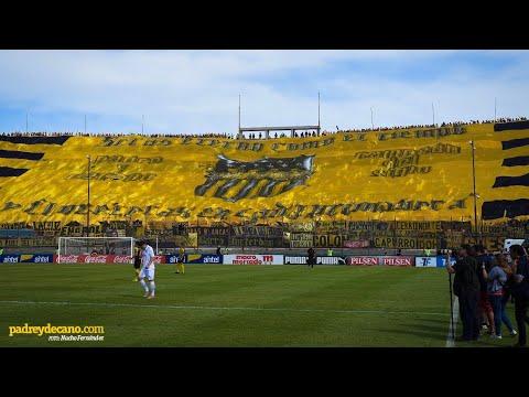 """""""Recibimiento Clásico Clausura 2019 - Hinchada Peñarol"""" Barra: Barra Amsterdam • Club: Peñarol"""
