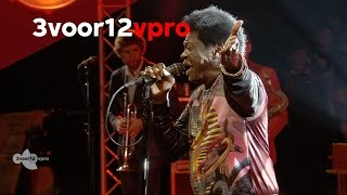 Charles Bradley - The World Is Going Up In Flames (Live op Into The Great Wide Open 2014)